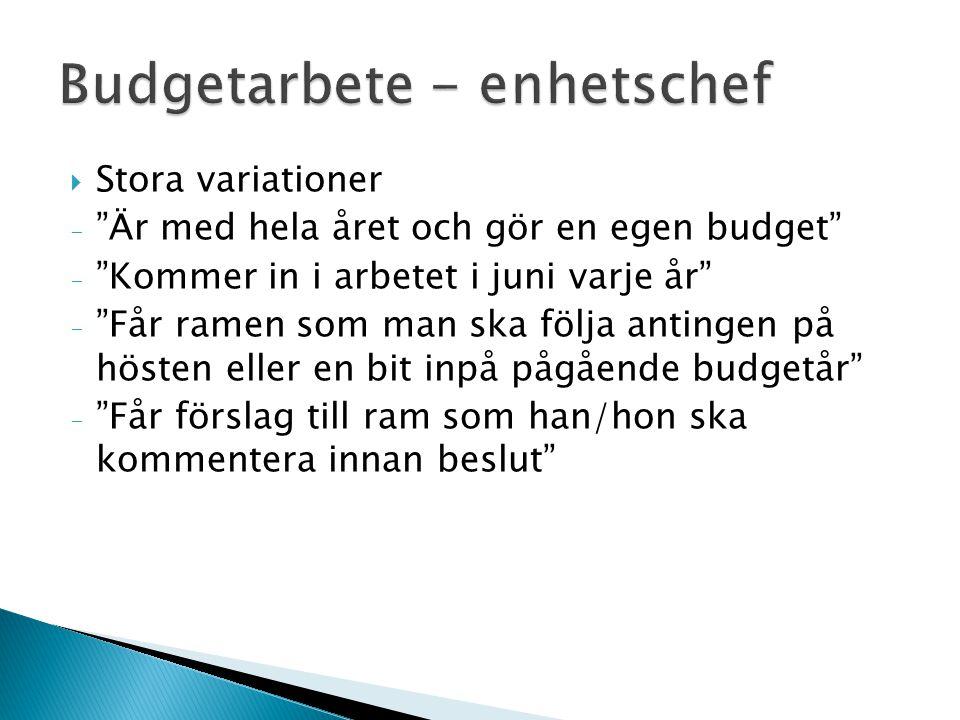 Budgetarbete - enhetschef
