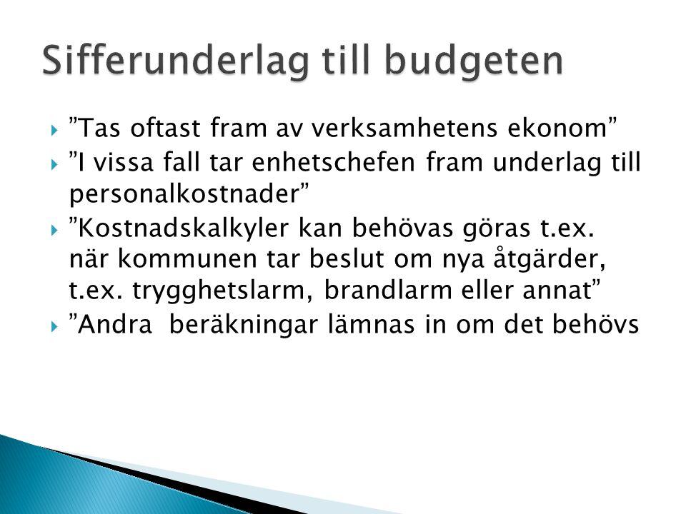 Sifferunderlag till budgeten
