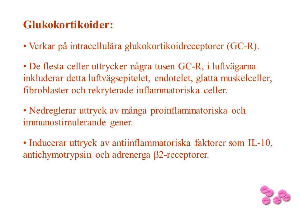 Glukokortikoider: Verkar på intracellulära glukokortikoidreceptorer (GC-R).