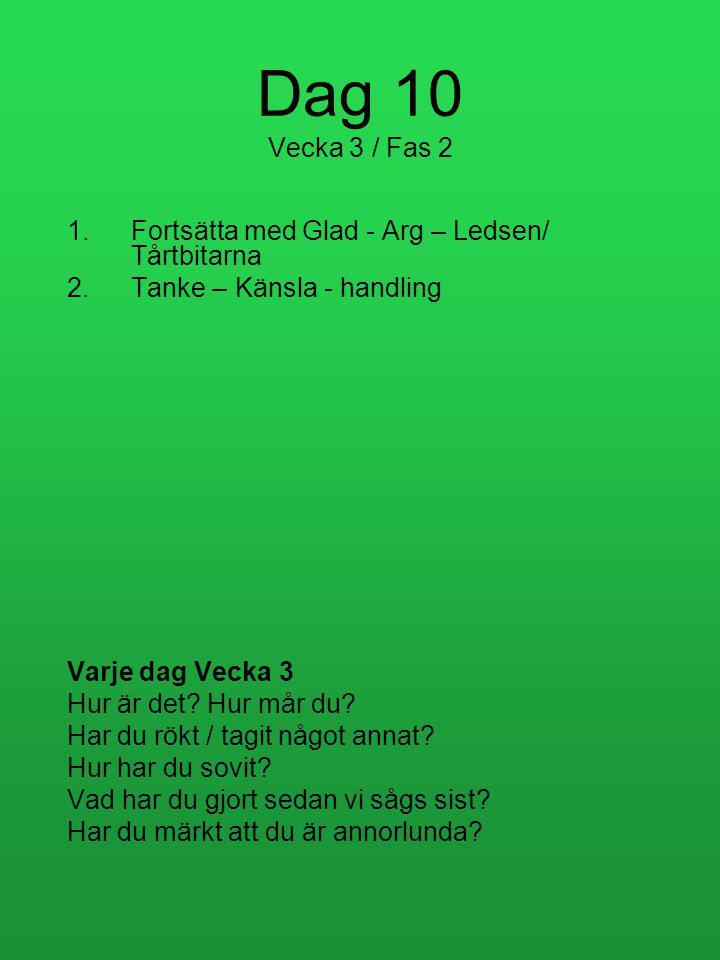 Dag 10 Vecka 3 / Fas 2 Fortsätta med Glad - Arg – Ledsen/ Tårtbitarna