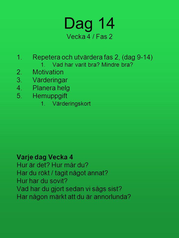 Dag 14 Vecka 4 / Fas 2 Repetera och utvärdera fas 2, (dag 9-14)