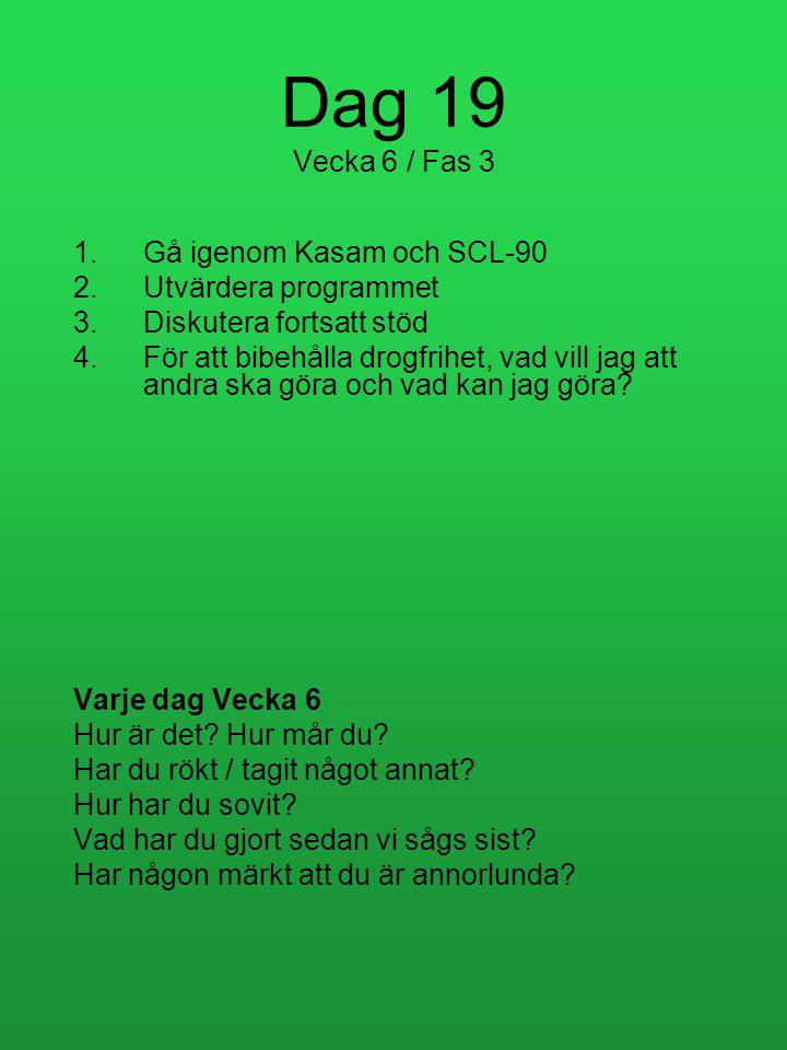 Dag 19 Vecka 6 / Fas 3 Gå igenom Kasam och SCL-90 Utvärdera programmet