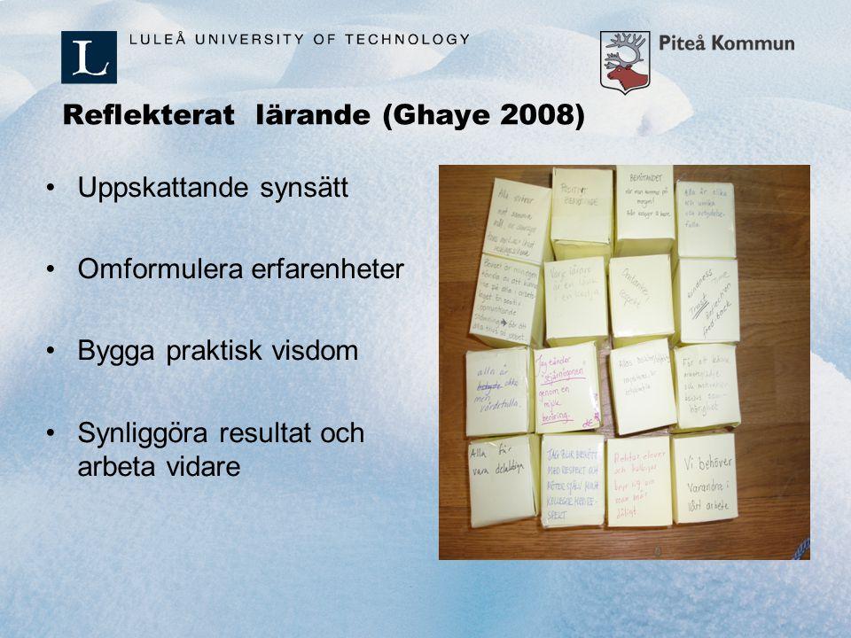 Reflekterat lärande (Ghaye 2008)