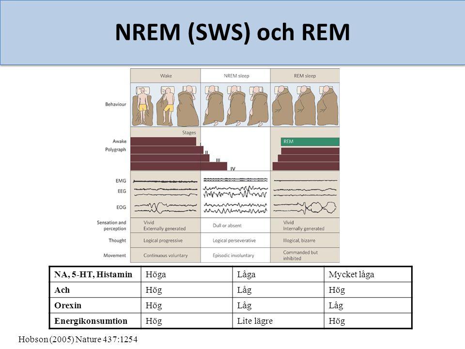 NREM (SWS) och REM NA, 5-HT, Histamin Höga Låga Mycket låga Ach Hög