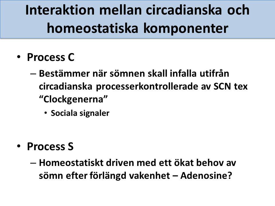 Interaktion mellan circadianska och homeostatiska komponenter