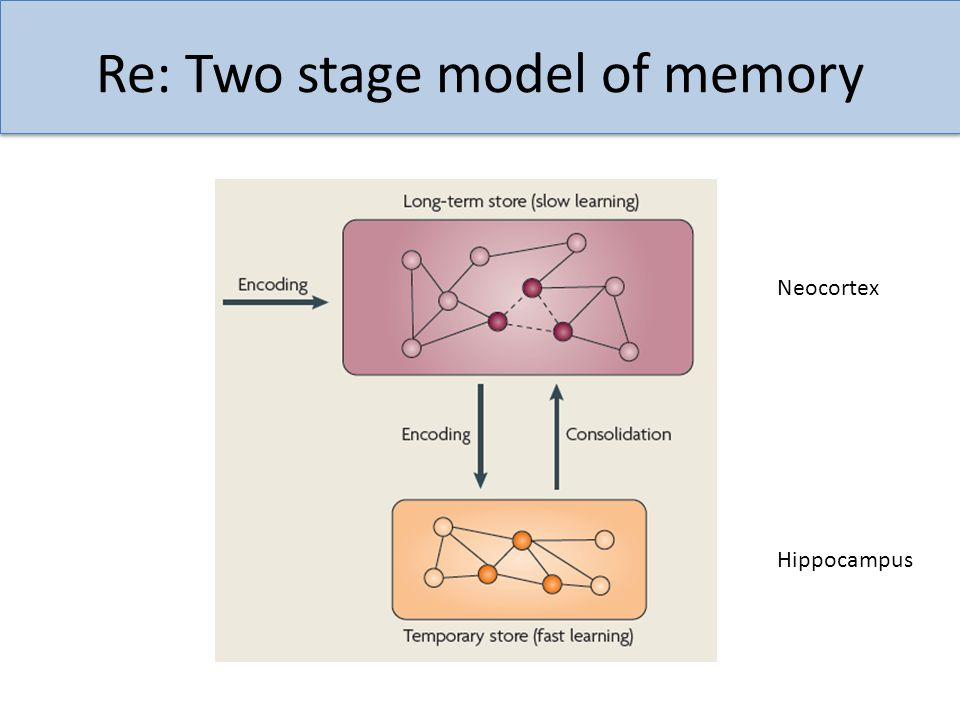 Re: Two stage model of memory