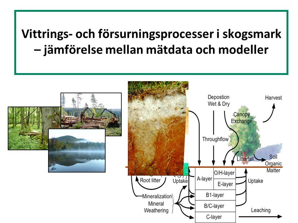 Vittrings- och försurningsprocesser i skogsmark – jämförelse mellan mätdata och modeller