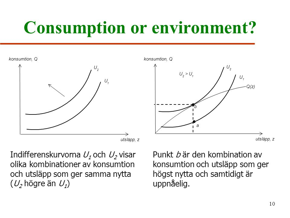 Consumption or environment