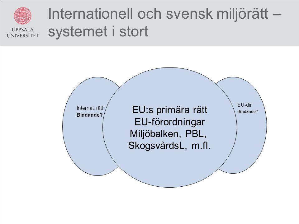 Internationell och svensk miljörätt – systemet i stort