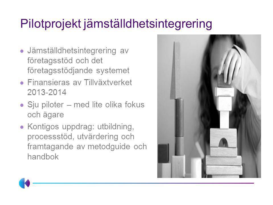 Pilotprojekt jämställdhetsintegrering