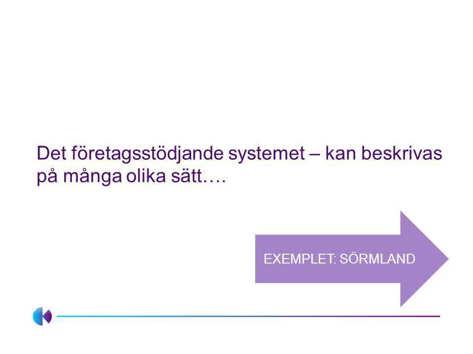 Det företagsstödjande systemet – kan beskrivas på många olika sätt….
