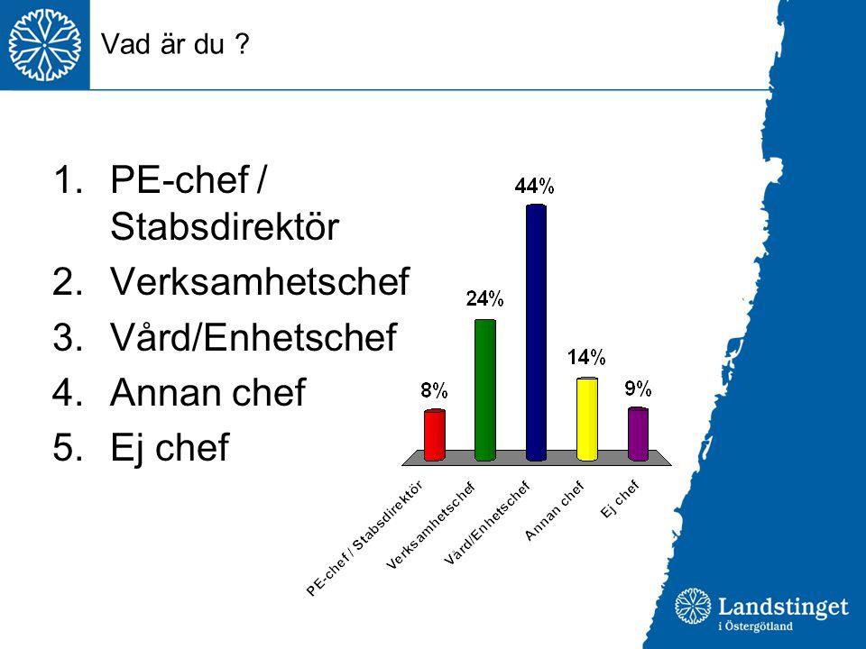 PE-chef / Stabsdirektör Verksamhetschef Vård/Enhetschef Annan chef