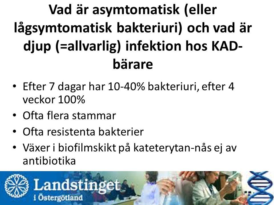 Vad är asymtomatisk (eller lågsymtomatisk bakteriuri) och vad är djup (=allvarlig) infektion hos KAD-bärare