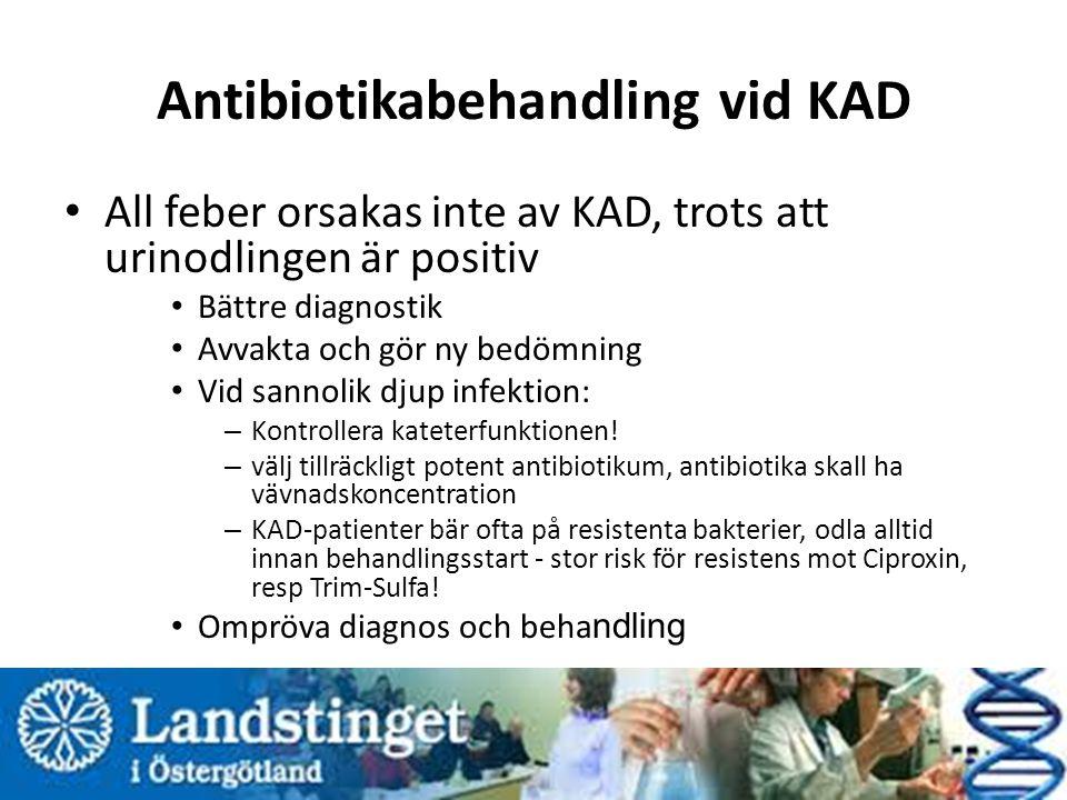 Antibiotikabehandling vid KAD