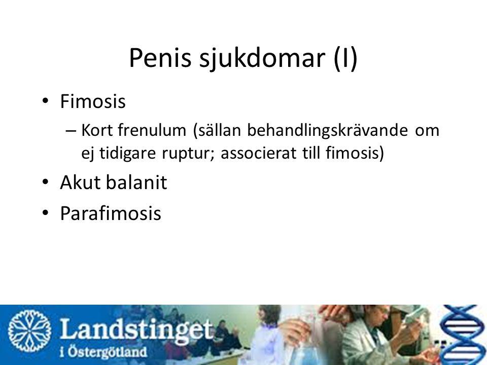 Penis sjukdomar (I) Fimosis Akut balanit Parafimosis