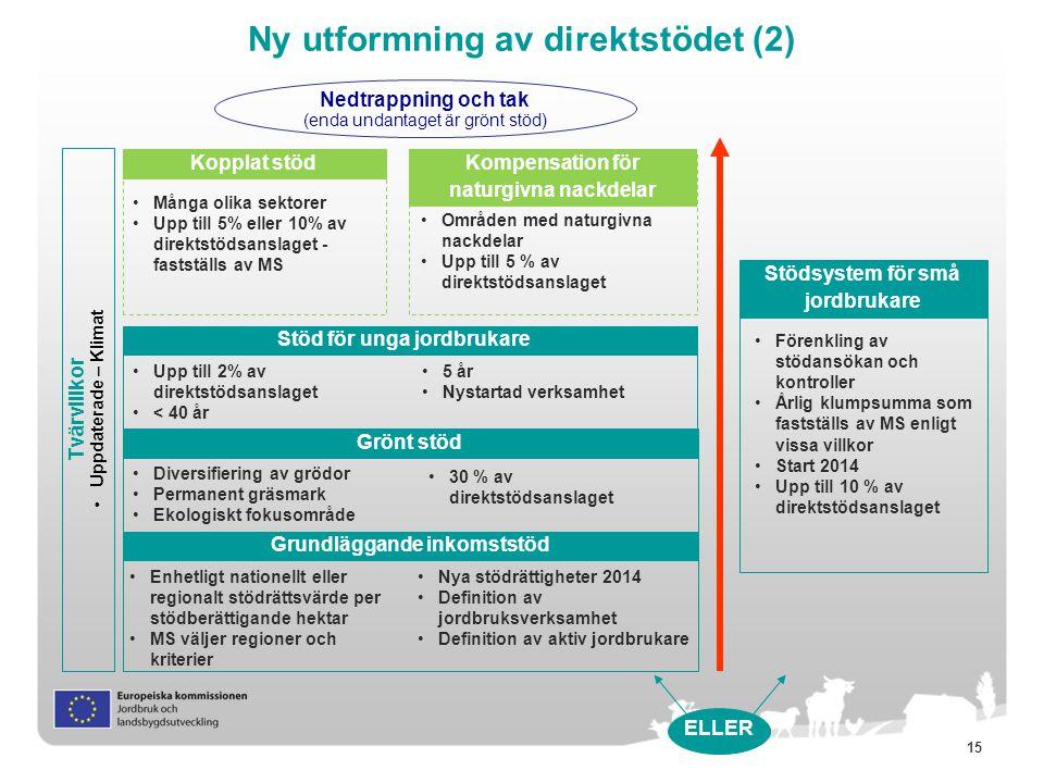 Ny utformning av direktstödet (2)