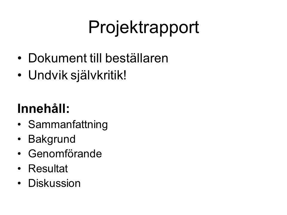 Projektrapport Dokument till beställaren Undvik självkritik! Innehåll: