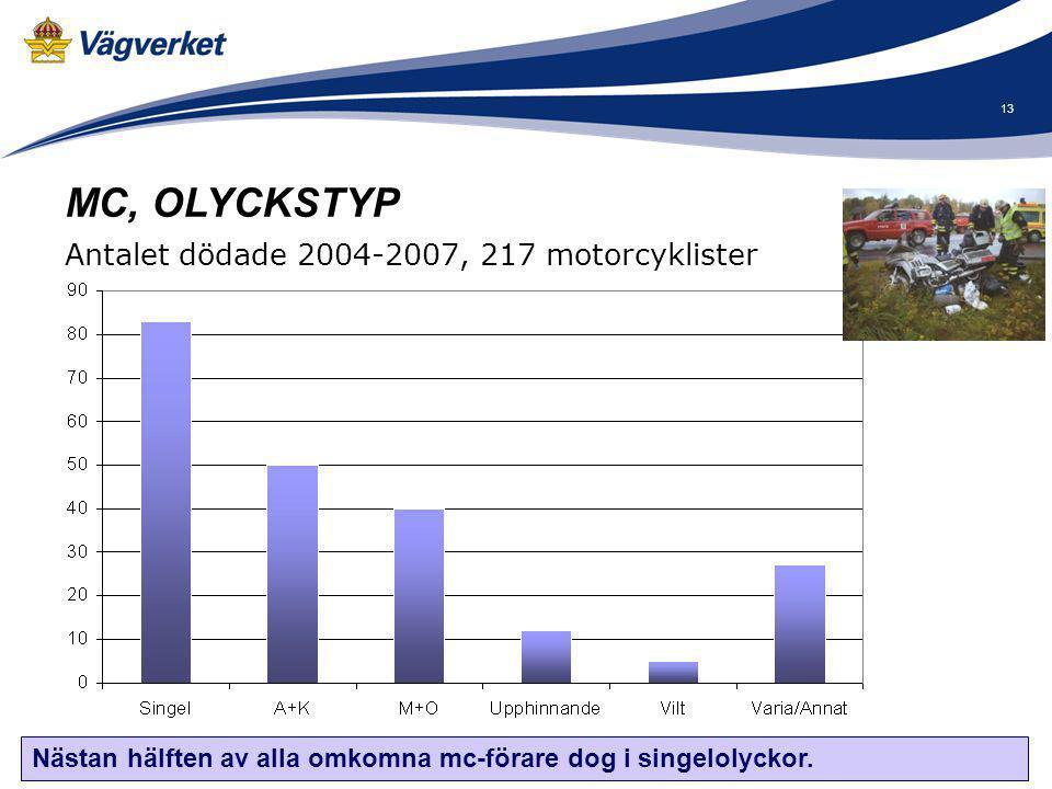 MC, OLYCKSTYP Antalet dödade 2004-2007, 217 motorcyklister