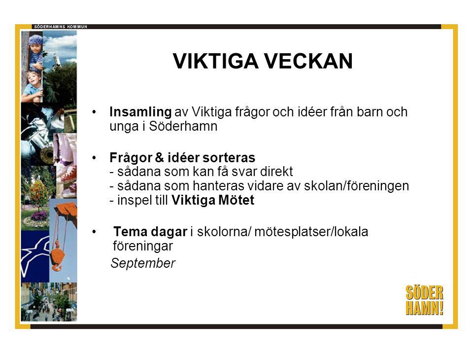 VIKTIGA VECKAN Insamling av Viktiga frågor och idéer från barn och unga i Söderhamn.