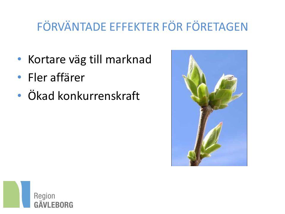 FÖRVÄNTADE EFFEKTER FÖR FÖRETAGEN