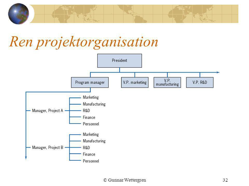 Ren projektorganisation