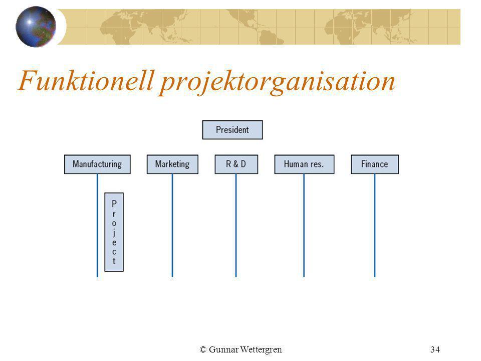 Funktionell projektorganisation