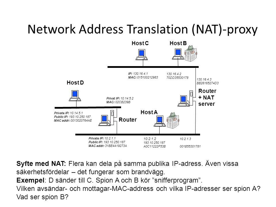 Network Address Translation (NAT)-proxy