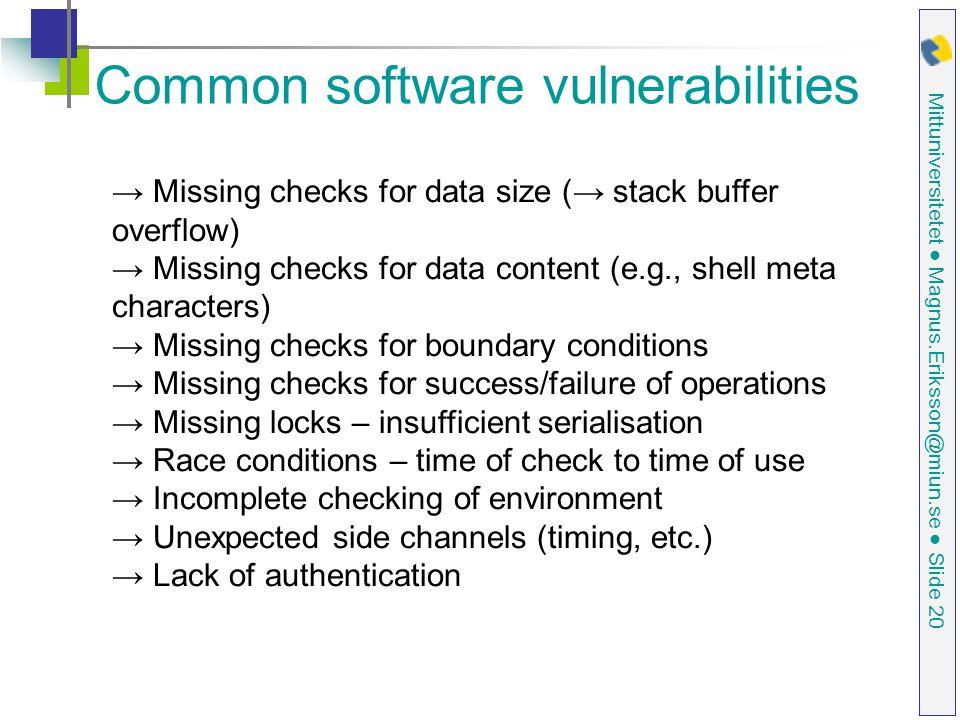 Common software vulnerabilities