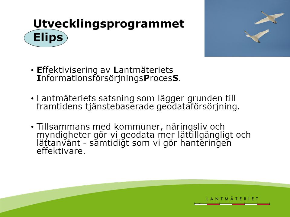 Utvecklingsprogrammet Elips