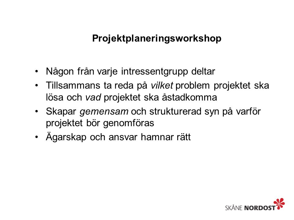 Projektplaneringsworkshop