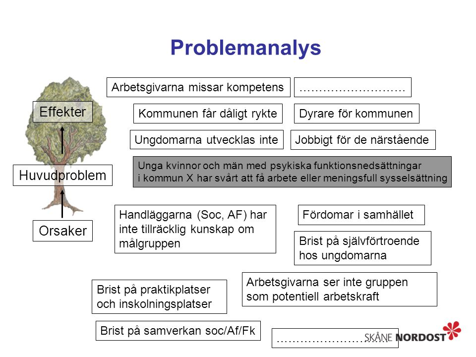 Problemanalys Effekter Huvudproblem Orsaker