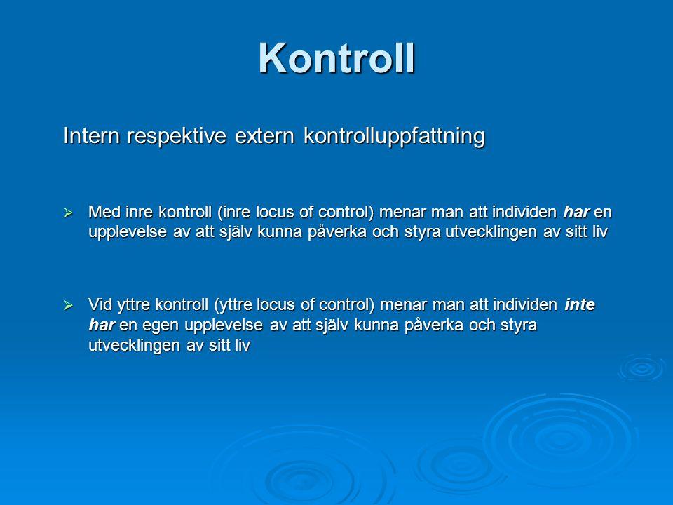 Kontroll Intern respektive extern kontrolluppfattning