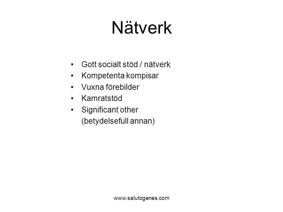 Nätverk Gott socialt stöd / nätverk Kompetenta kompisar