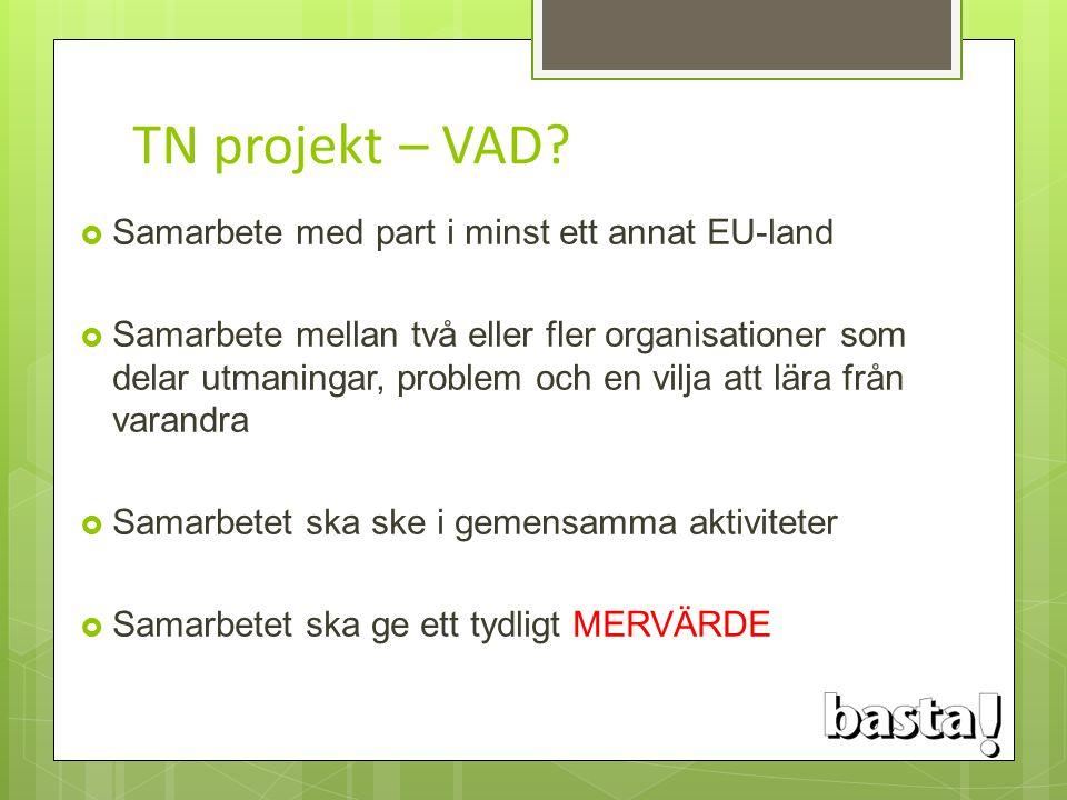 TN projekt – VAD Samarbete med part i minst ett annat EU-land