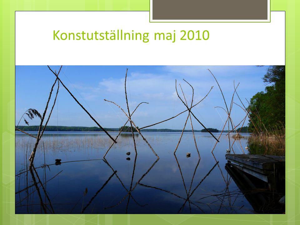 Konstutställning maj 2010