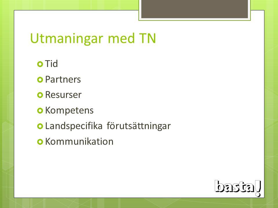 Utmaningar med TN Tid Partners Resurser Kompetens