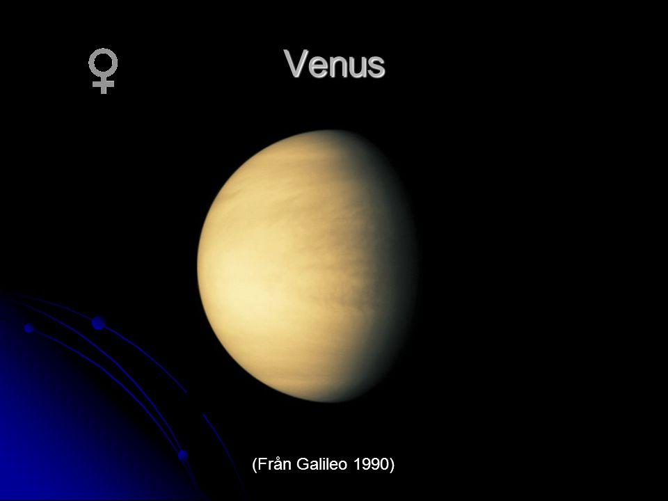 Venus (Från Galileo 1990)
