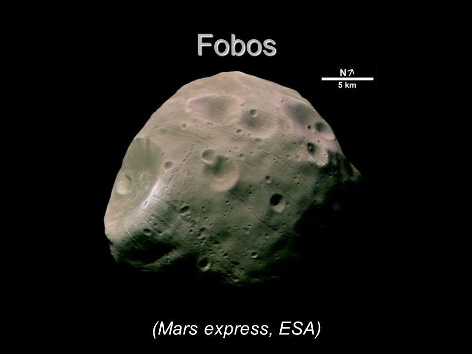 Fobos (Mars express, ESA)