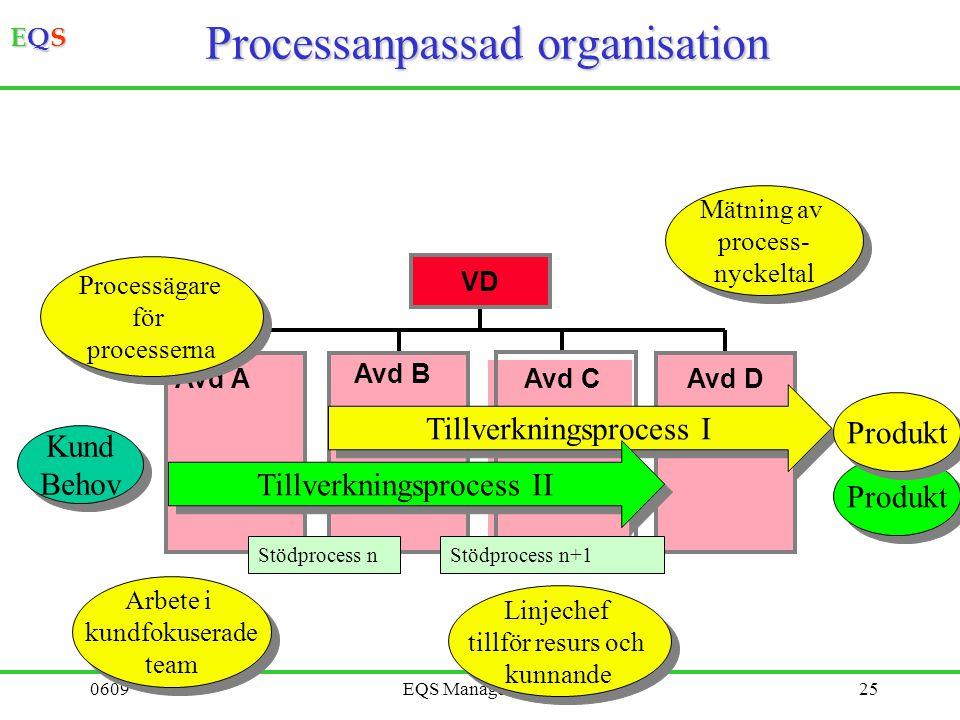 Processanpassad organisation
