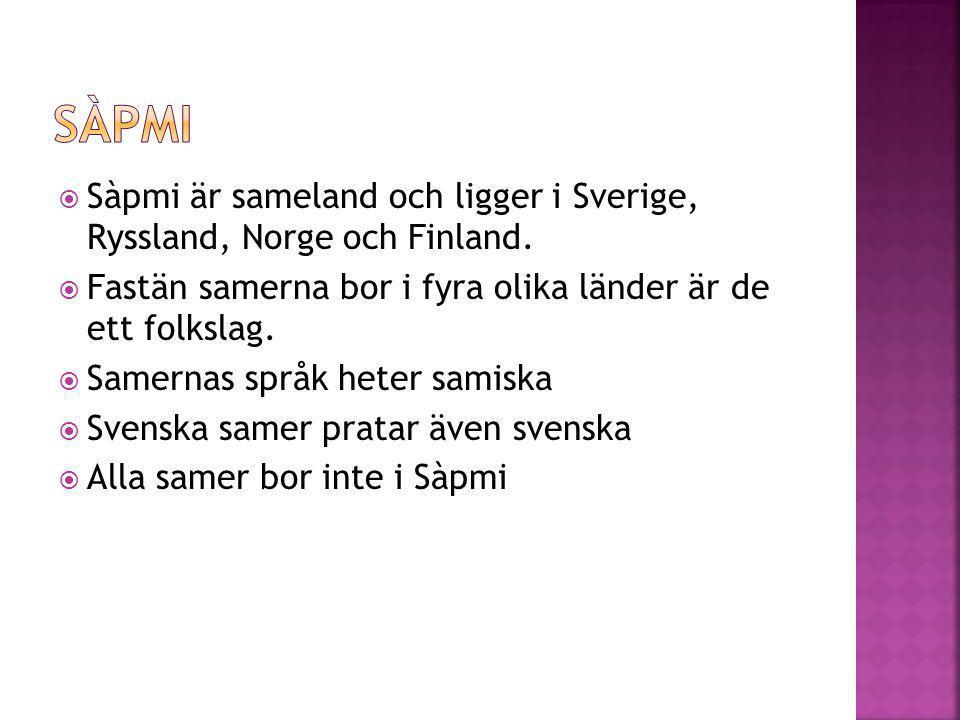 sàpmi Sàpmi är sameland och ligger i Sverige, Ryssland, Norge och Finland. Fastän samerna bor i fyra olika länder är de ett folkslag.