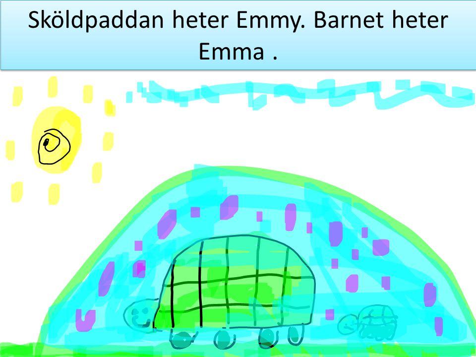 Sköldpaddan heter Emmy. Barnet heter Emma .
