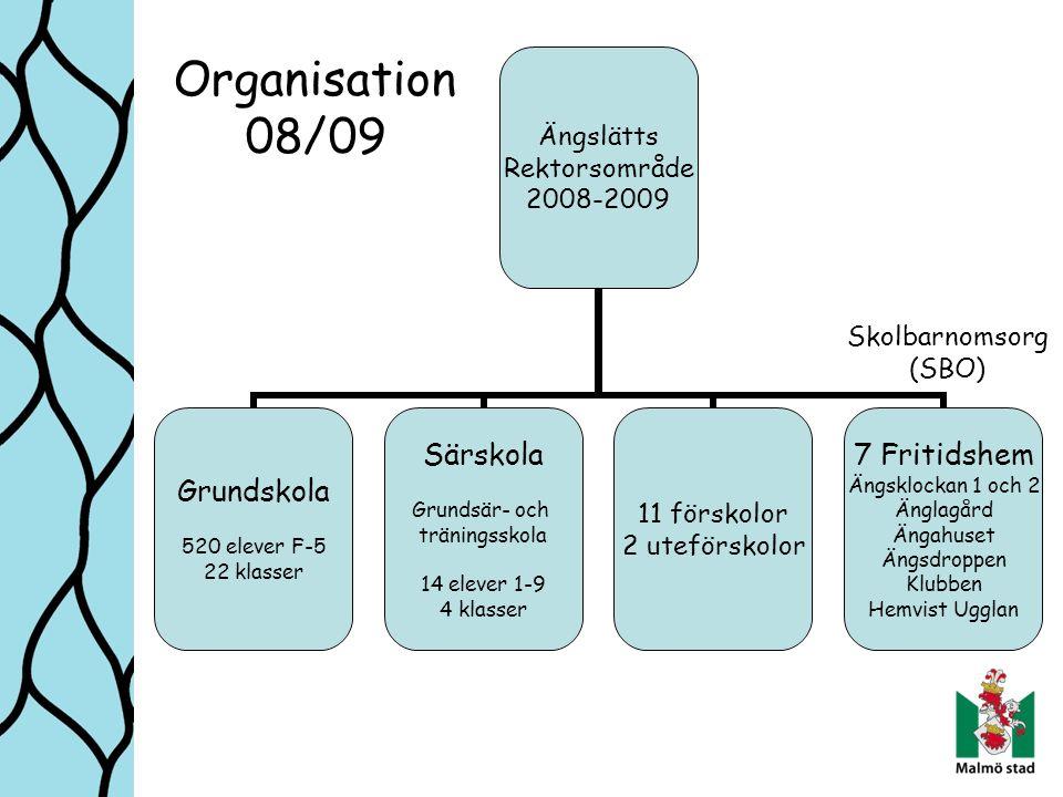 Organisation 08/09 Skolbarnomsorg (SBO)
