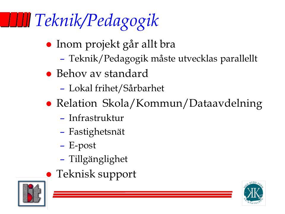 Teknik/Pedagogik Inom projekt går allt bra Behov av standard