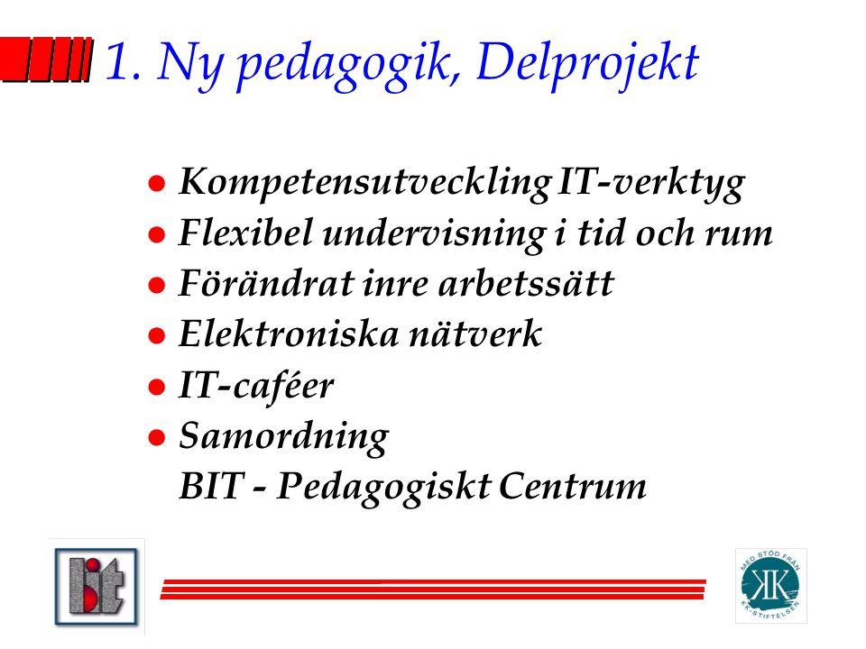 1. Ny pedagogik, Delprojekt