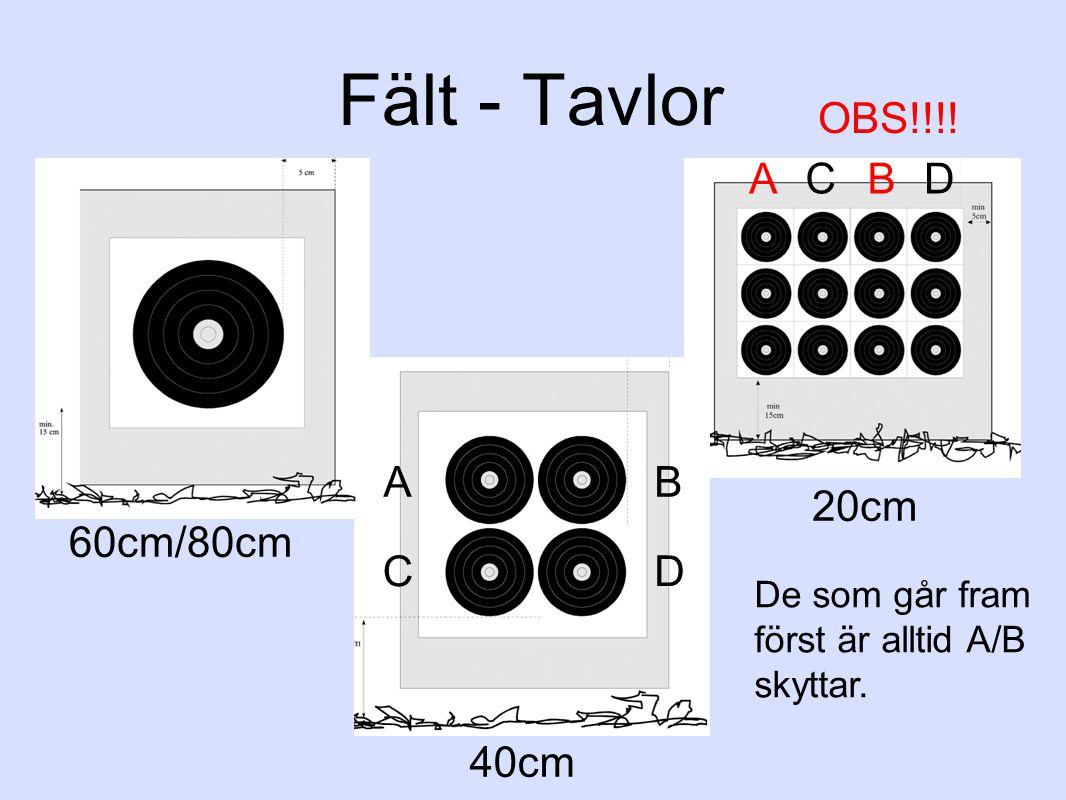 Fält - Tavlor OBS!!!! A C B D A B 20cm 60cm/80cm C D 40cm
