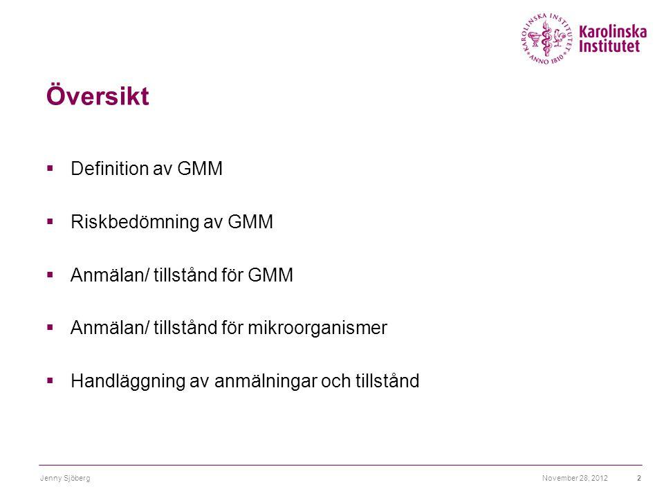 Översikt Definition av GMM Riskbedömning av GMM