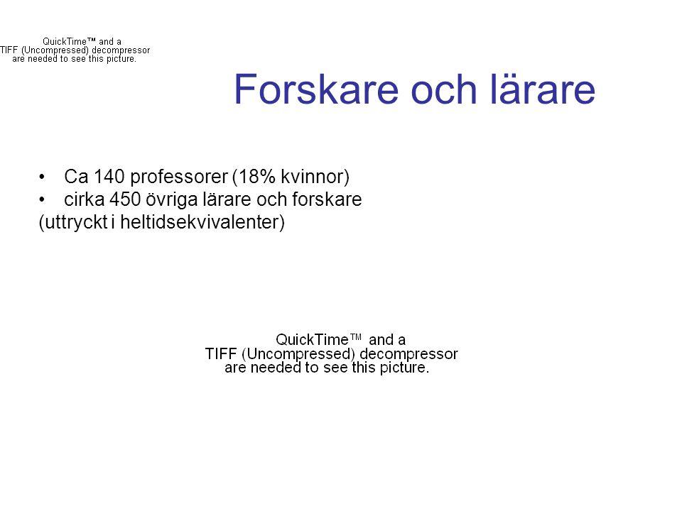 Forskare och lärare Ca 140 professorer (18% kvinnor)