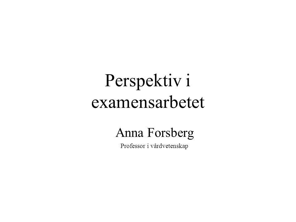 Perspektiv i examensarbetet
