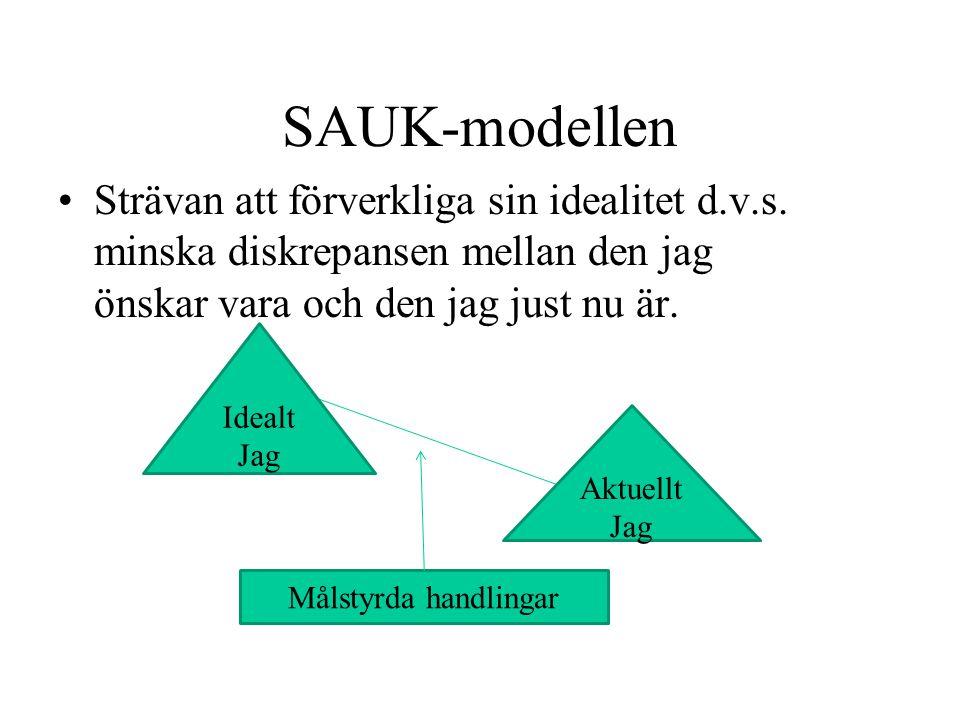 SAUK-modellen Strävan att förverkliga sin idealitet d.v.s. minska diskrepansen mellan den jag önskar vara och den jag just nu är.