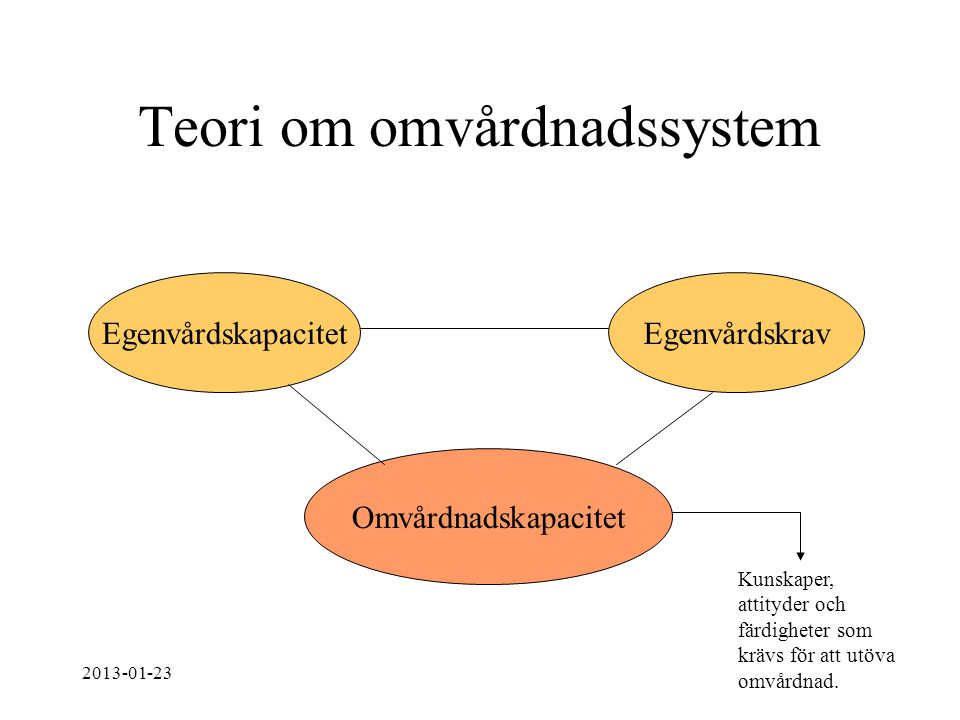 Teori om omvårdnadssystem